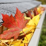 Gutter with fall leaves